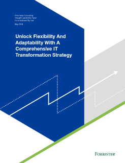 IT Transformation Strategy for Adaptability